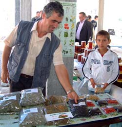 A herb grower displays his products at the Kukes Farmers' Fair